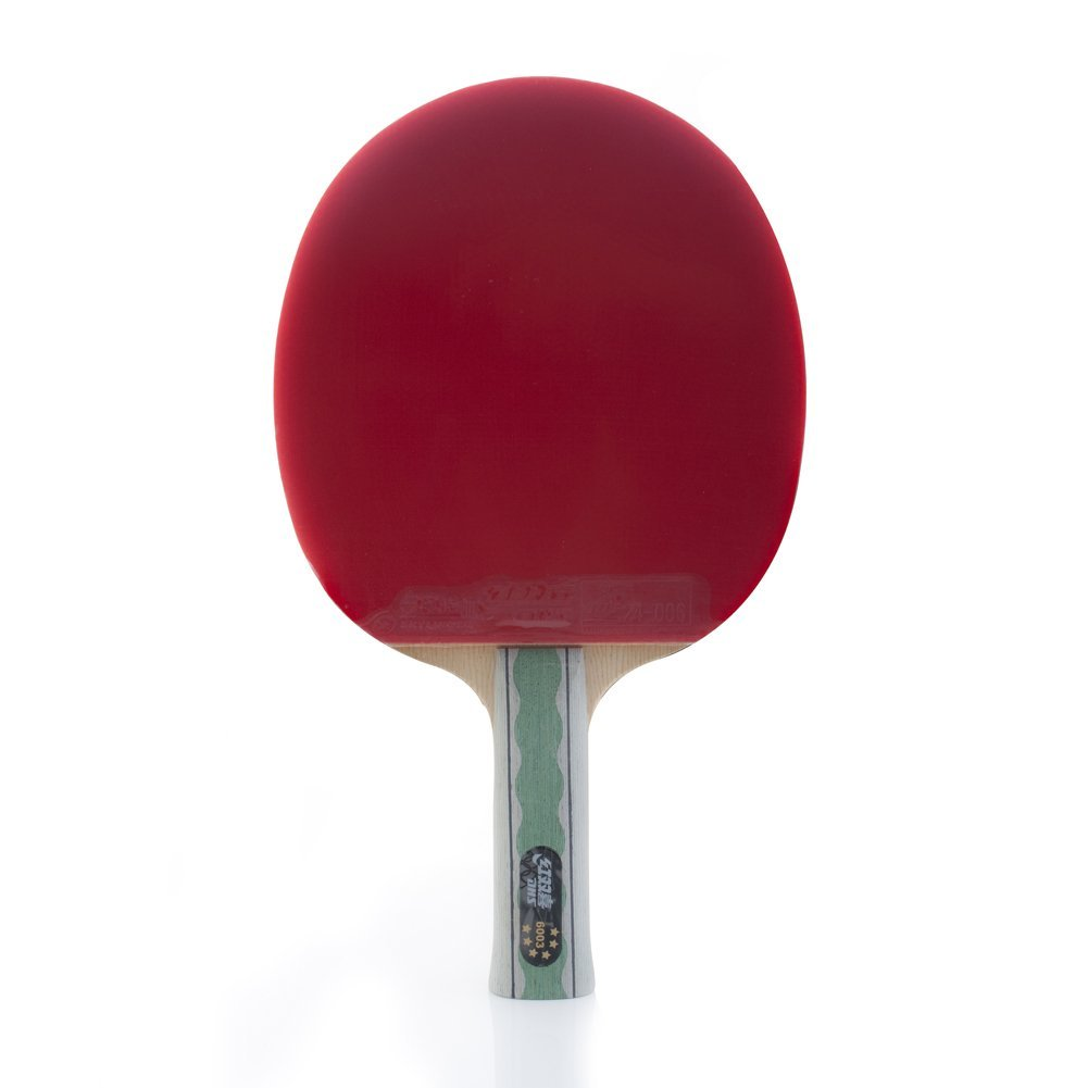 dhs-table-tennis-racket-x6003